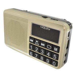 Portable FM Radio Noozy S24 3W Gold with USB Port